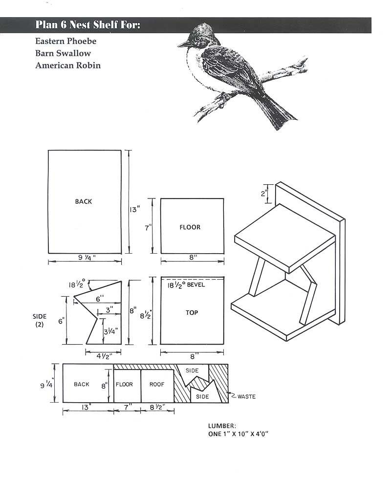 Tree Swallow Birdhouse Plans