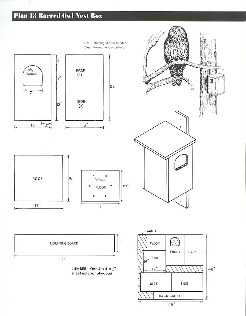 Eastern screech owl house plans for How to get building plans for your house