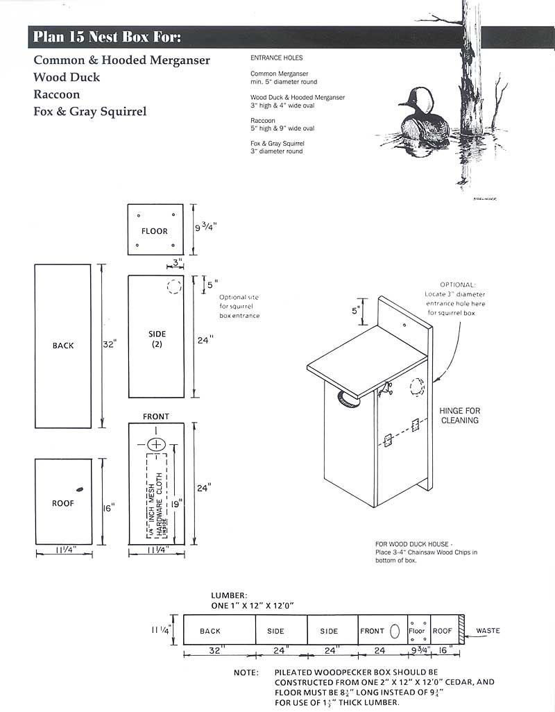 Flying Squirrel House Plans