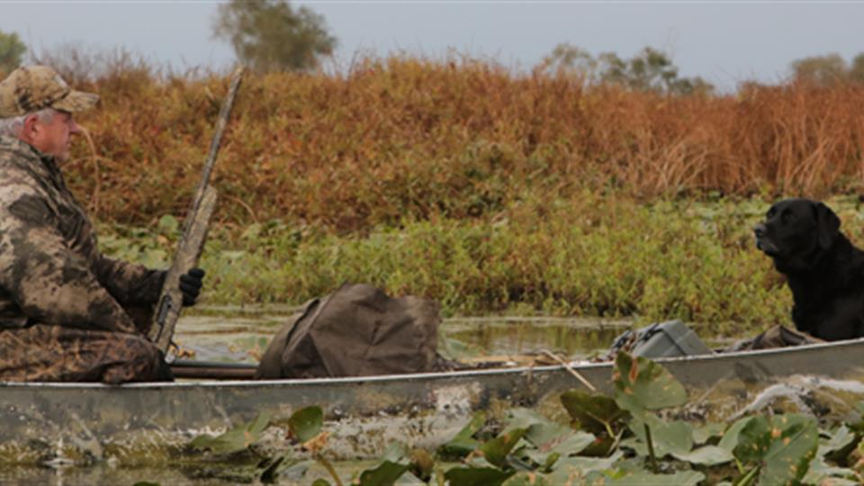A waterfowl hunter and his black labrador sit in a canoe in a wetland.
