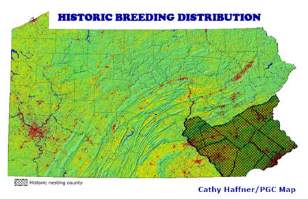 Delmarva Fox Squirrel Historic Breeding Distribution