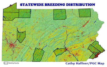 Least Bittern Statewide Distribution