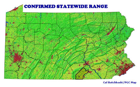Least Shrew Statewide Range