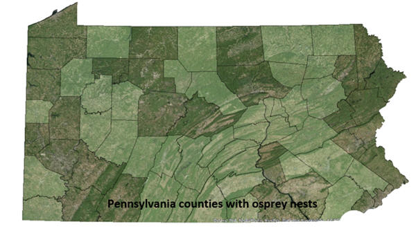 Pennsylvania counties with osprey nests map