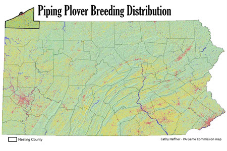Piping Plover Historic Distribution