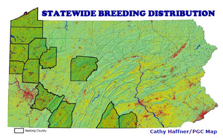 Upland Sandpiper Statewide Distribution