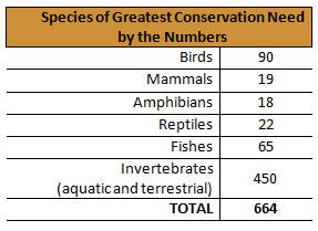 Species of greatest conservation need by the numbers