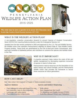 Pennyslvania Wildlife Action Plan