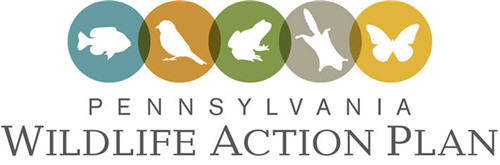 Pennsylvania Wildlife Action Plan