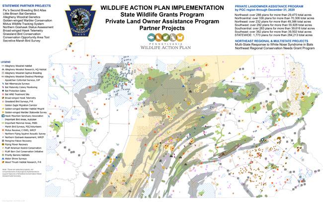 Wildlife Grants Program