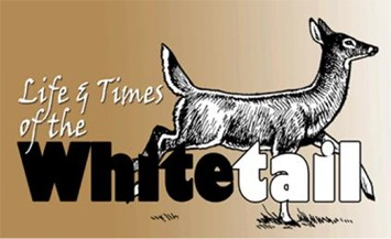 Life & Time of the Whitetail