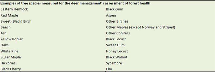 Deer Healthy Forest